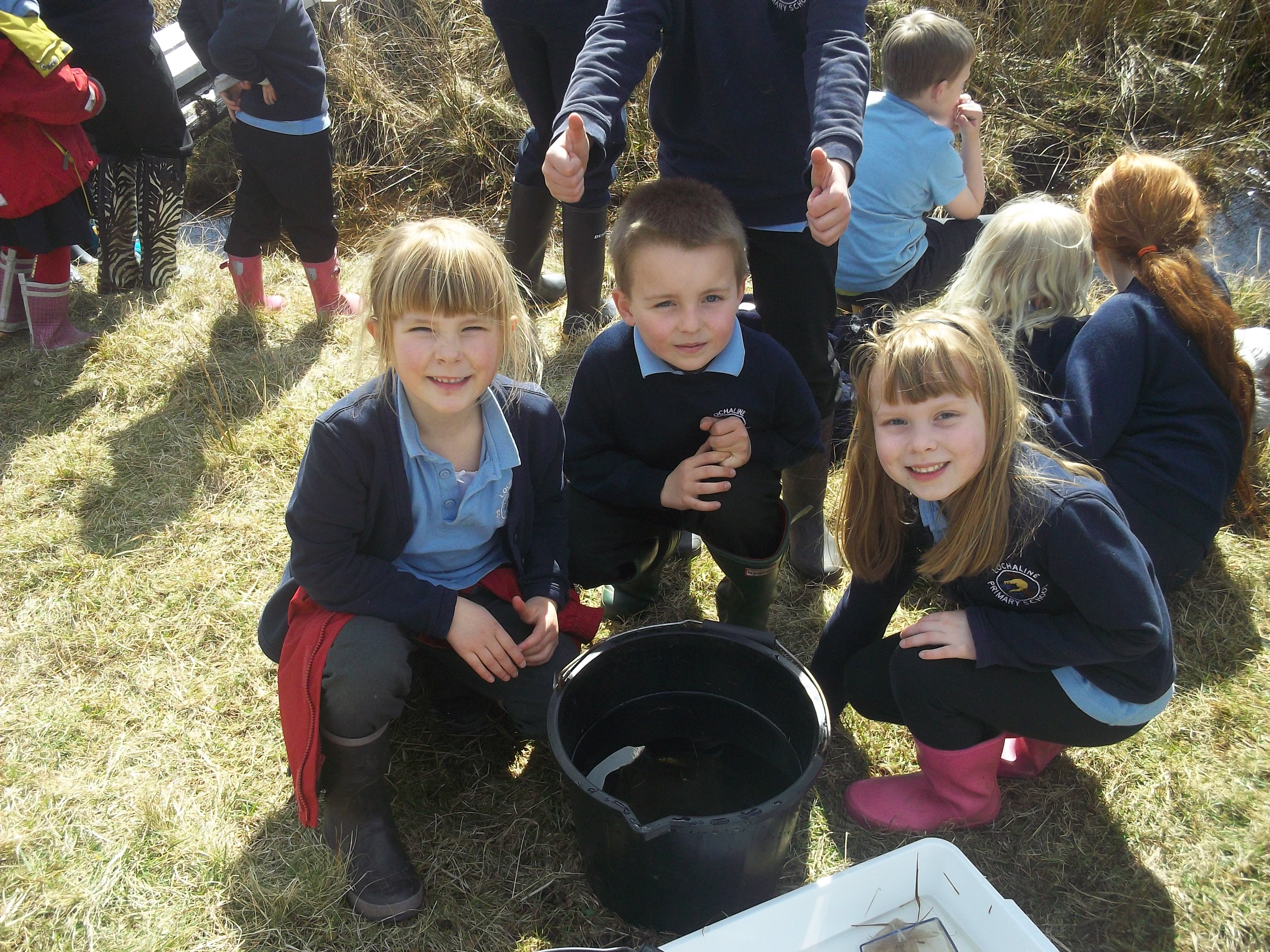 Lochaline pupils identifying fish