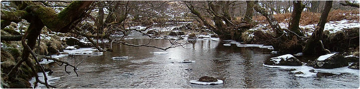 River Moidart in winter