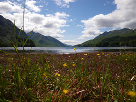 Loch Shiel from Glenfinnan