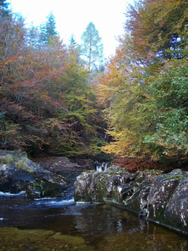 Autumn colours on the River Slatach